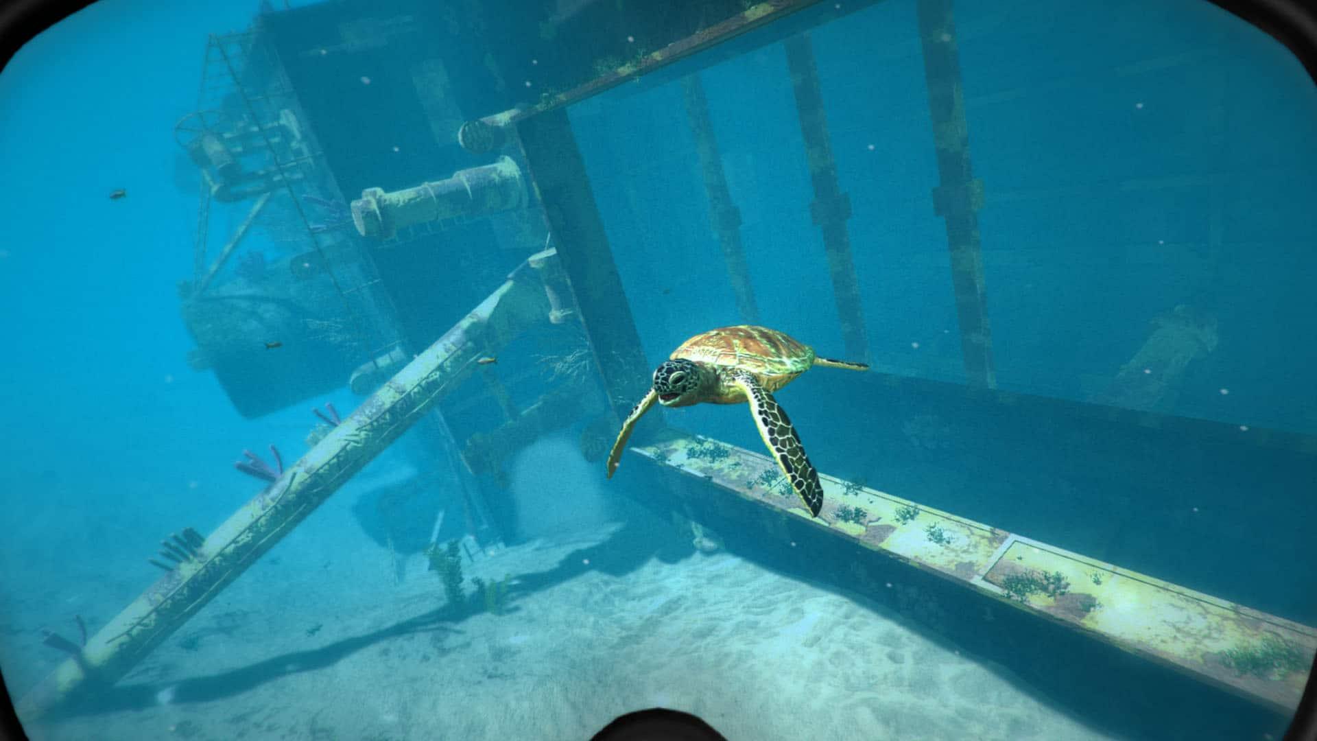 Virtual Scuba Diving